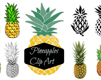 Pineapple clipart, tropical, summer, paradise clipart, pineapple variety, pineapple illustrations, summer clipart, pineapple art, digital