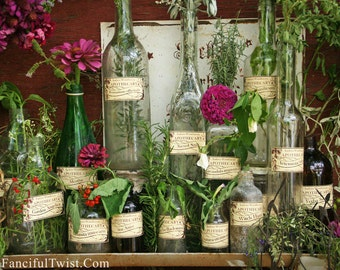 15 Herb, Spell & Potion Labels - Isadora Woodhaven Apothecary