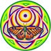 Ian reviewed Cosmic Circle, Monarch Solar Butterfly, Sun Light catcher window cling, Sacred Flower Geometry, Infinitely Re-usable, Art made in California