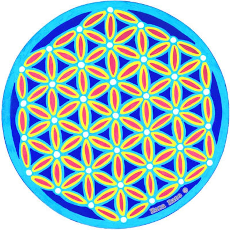 Cosmic Circle Turquoise Flower of Life Sun Light catcher image 0