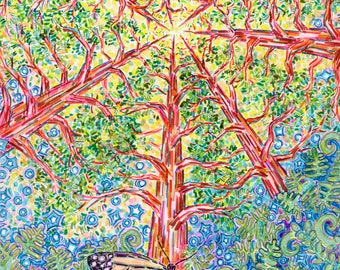 Greeting Card, Monarch Butterfly, Sequoia Redwoods, Trees, Eco-friendly Wildlife Art, Sunshine Mystical Light, Northern California Artist