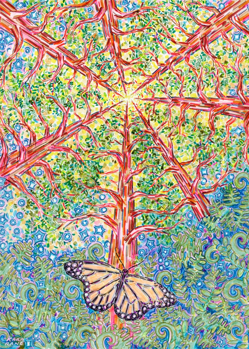 Greeting Card Divine Butterfly Sequoia Redwood Tree image 0