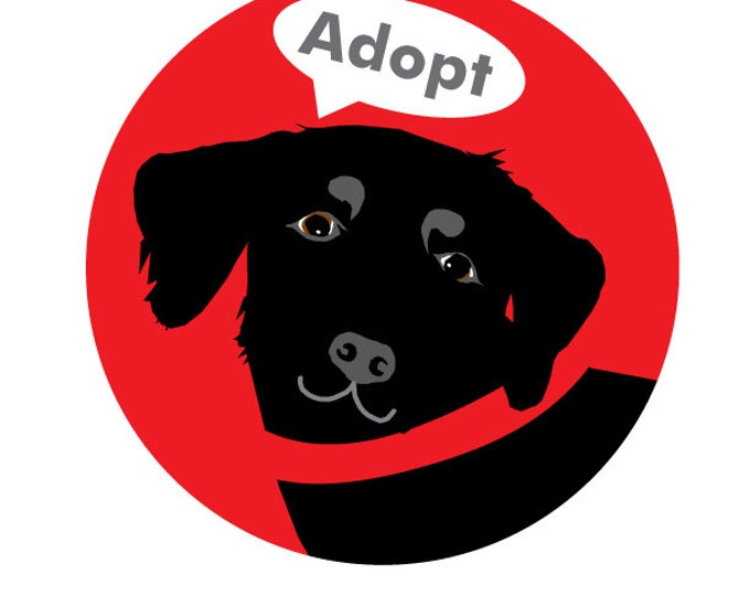Adopt Bumper Sticker Black Labrador Retriever Dog