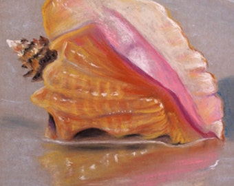 Conch Shell Original Pastel Painting 9x12 inches FREE SHIPPING