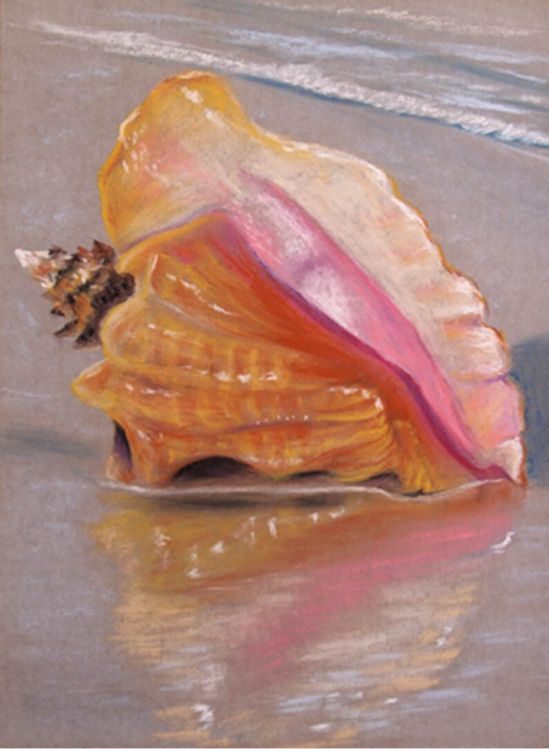 Conch Shell Original Pastel Painting 9x12 inches FREE SHIPPING image 0