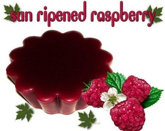 4 Sun Ripened Raspberry Tarts Wickless Candle Melts Berry Scent