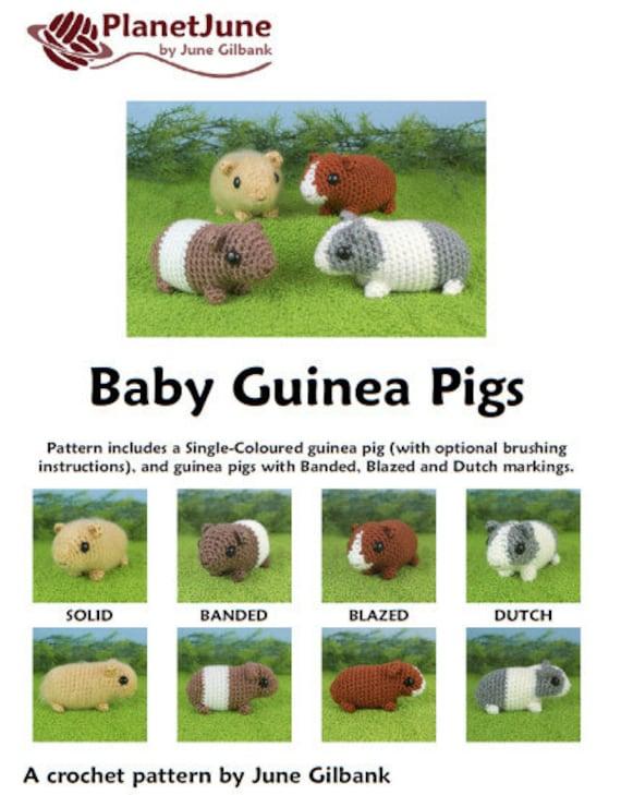 guinea pigs galore | PlanetJune by June Gilbank: Blog | 729x570