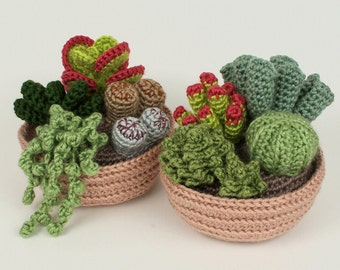 Succulent Collections 1 and 2, eight realistic potted plant CROCHET PATTERNS digital PDF file download