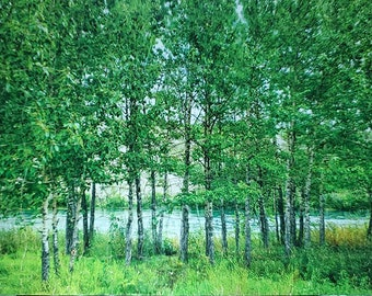 Puzzle Yukon River, green trees by river, 266 pieces, free shipping Canada, Yukon summer
