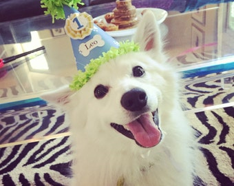 Boy Dog Birthday Hat Personalized