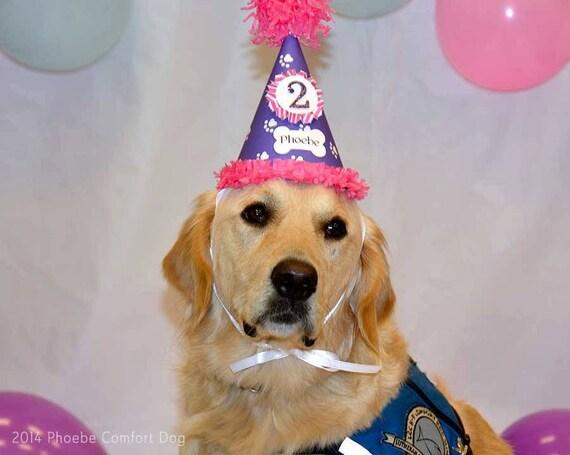 Girl Dog Birthday Hat Personalized