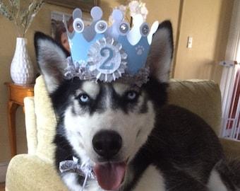Boy Dog Crown, Puppy Birthday Party Hat Photo Prop, Gotcha Day Celebration, Pet Supplies Outift