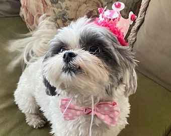 Girl Dog Bow Tie Bowtie Monogramed and Birthday Crown Set, Puppy Party Photo Props, Pet Supplies, Doggy Accessories