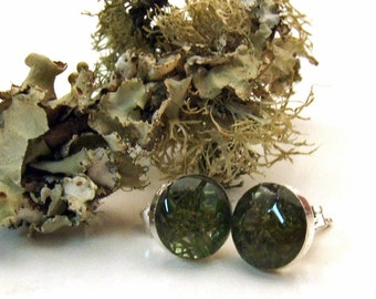 REINDEER MOSS Small Round Stud Earrings on Sterling Silver Posts with Resin - Nature Jewelry from the Captured Collection