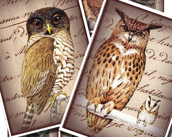 wise old owls on antique handwriting, a printable digital collage sheet 146