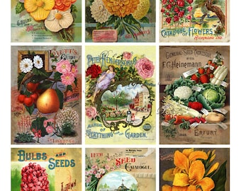 vintage seed packets, flowers, fruits and vegetables, digital printable images no. 1591