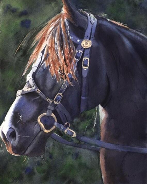 Giclee Print Watercolor Painting Morgan Friesian Black Horse Art watercolor