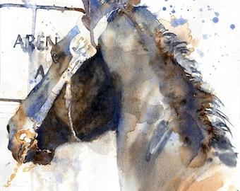 PRINT  Friesian Morgan Warmblood Gelding  horse art watercolor Painting Black Lover Unique Gift Teen Girl Big Large Huge Equine equestrian