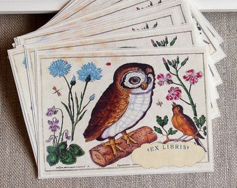 owl book plates - bird bookplates - ex libris - personalized bookplate stickers - gift for book lovers - custom gift under 20 - bookworm