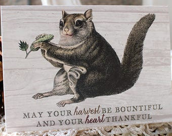 squirrel note card set - fall Autumn greeting cards - harvest notecards - Thanksgiving greeting card - funny Thanksgiving card - squirrels