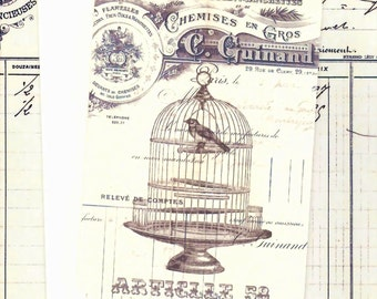 Blank Note Cards -  Vintage French Birdcage