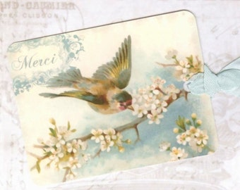 Bird Gift Tags , Blue Bird  , Merci Tags , Vintage Style ,  Aqua and Pink, by Bluebird Lane