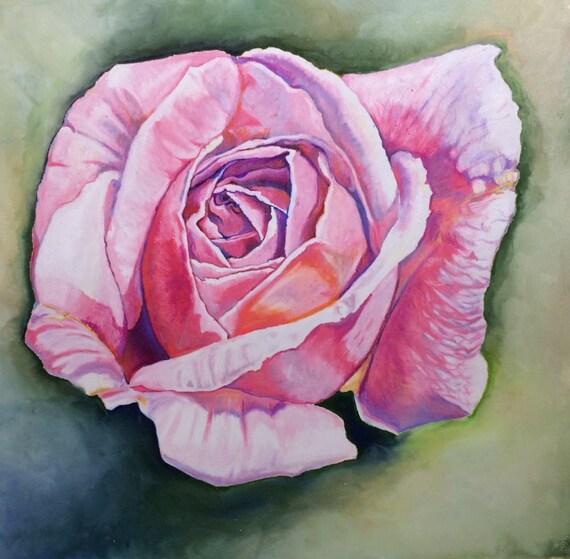 Cécile Brunner Rose Fleur Couleur Crayon Dessin Fine Art