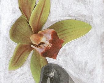 Flora & Fauna Card No. 9