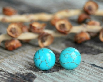Best Friend Birthday Gift . Graduation Gift for Her . Turquoise Howlite Earrings . Surgical Steel Studs . High School College Graduation