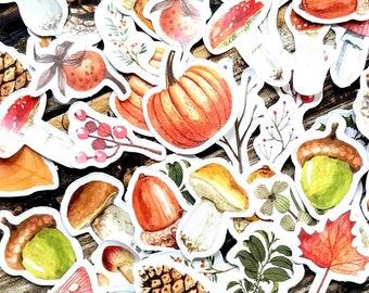 46 pcs . Fall Nature Stickers . Art Journal Stickers . Pumpkin Acorn Mushroom . Planner Stickers . Bujo Stickers . Bullet Journal Stickers