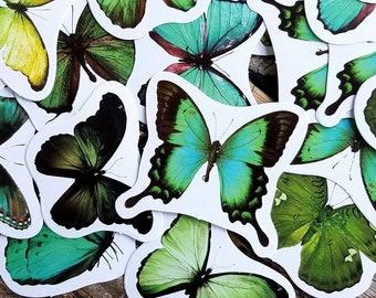 45 pcs . Green Butterfly Stickers . Art Journal Stickers . Planner Stickers . Pen Pal Stickers . Stationary Stickers . Green Sticker Pack