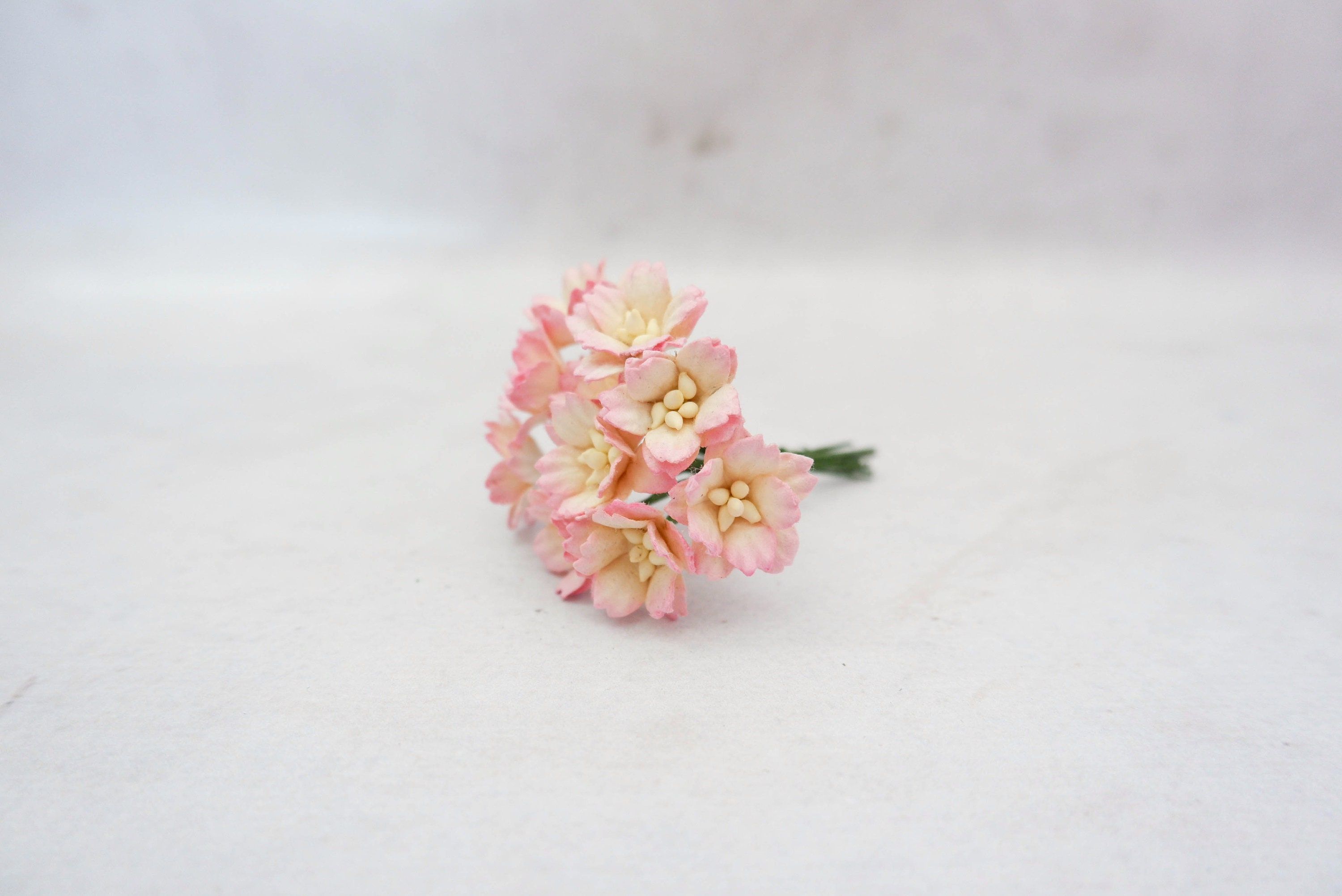 10 20mm Pink Tip Paper Cherry Blossoms With Wire Stems 2 Cm Etsy