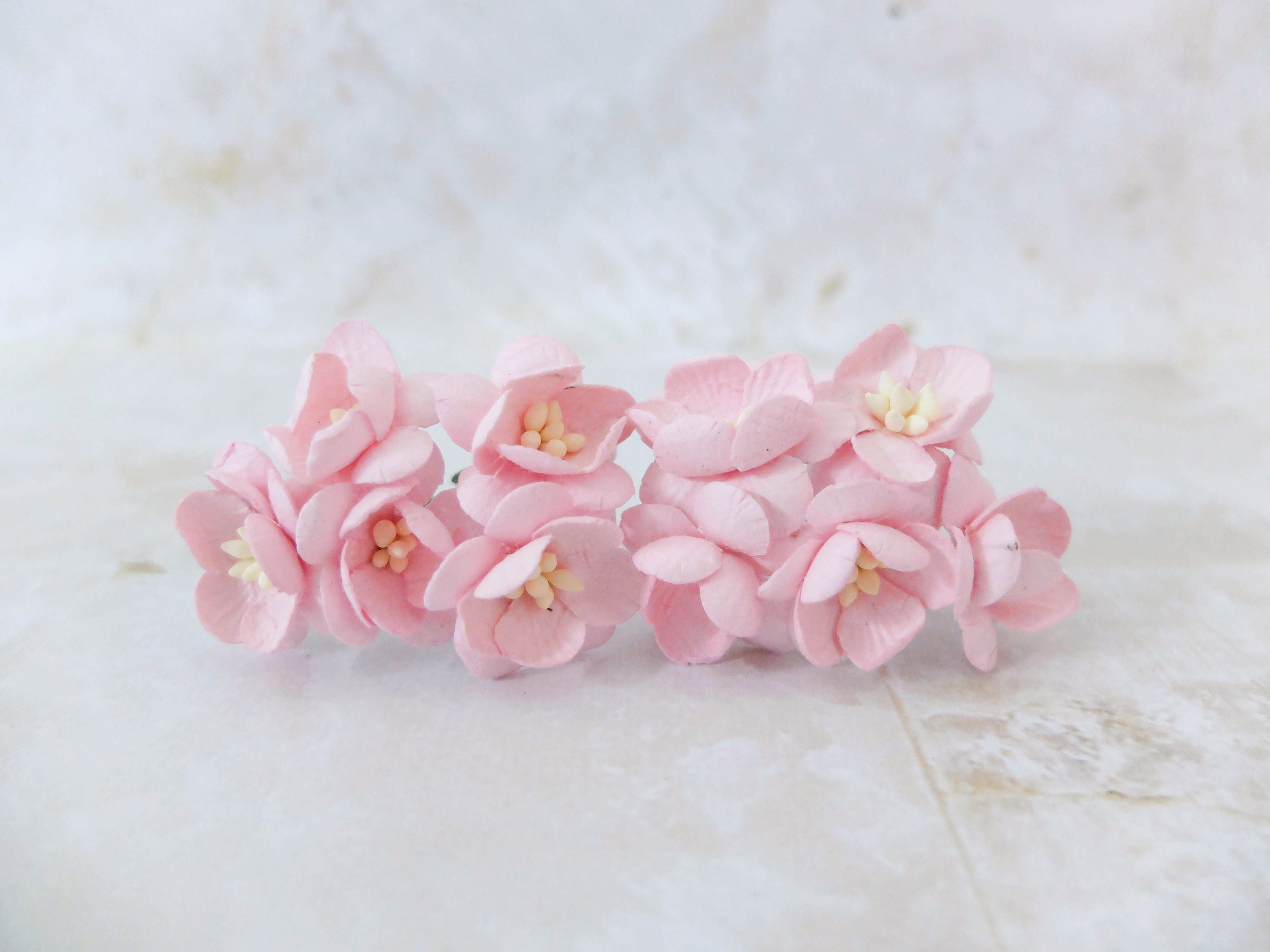 10 1 Soft Pink Paper Cherry Blossom Paper Flowers With Etsy