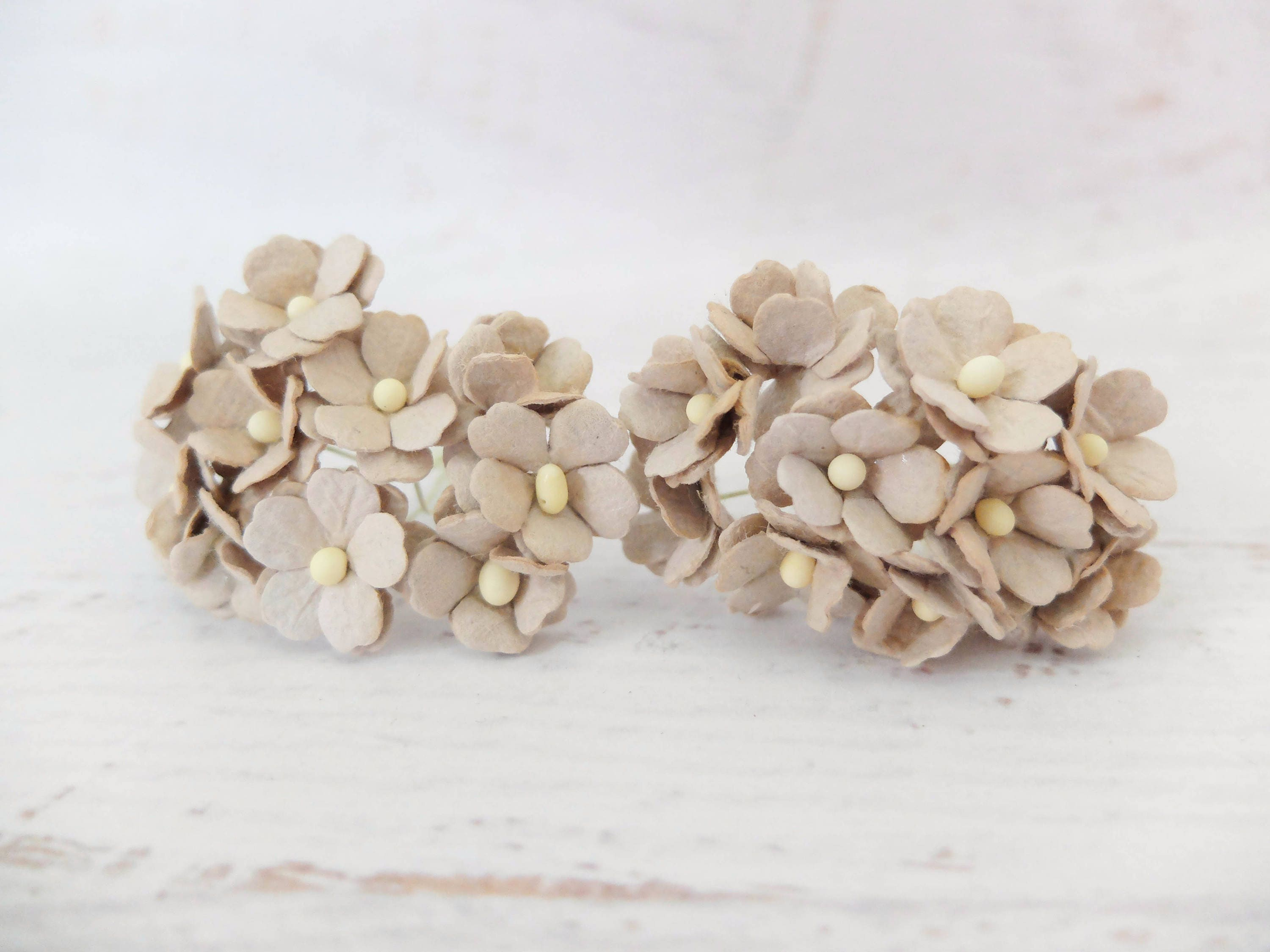 20 Pcs 20mm Light Brown Paper Hydrangea 2 Cm Brown Paper Etsy