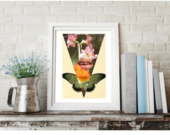 an intrigue in petals - FREE SHIPPING