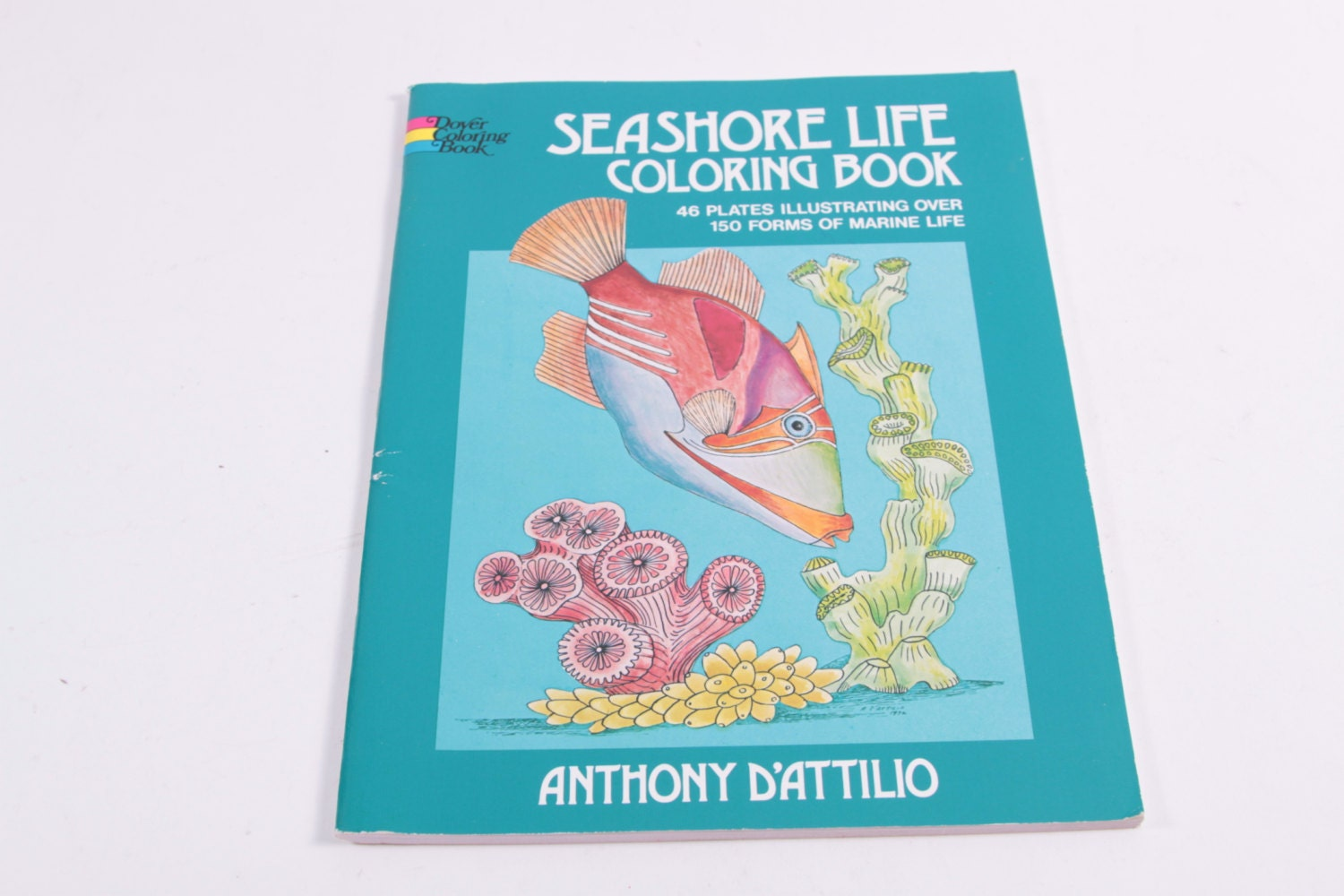 Seashore Life Coloring Book by Anthony D\'Attilio The Pink | Etsy