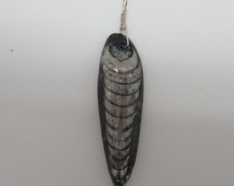 Orthoceras Fossil Pendant sterling silver  natural fossil