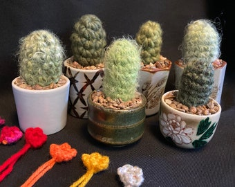 Small Crocheted Cactus with choice of flower