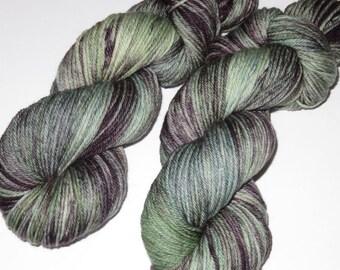 SALE 20 Percent Off -- Hand Dyed Superwash Merino Worsted Yarn -- Sage in Bloom / Squidward