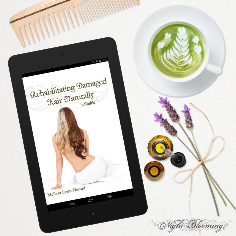 ebook Rehabilitating Damaged Hair Naturally: A Guide mobi PDF image 0