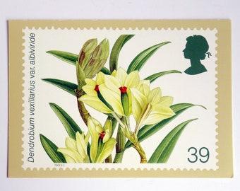 Vintage Floral Art Postcard: Orchid Illustration, Royal Mail Series, Blank & Unused