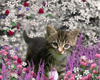 Emma in Flowers I - Gray Tabby Kitten ACEO, Art Card