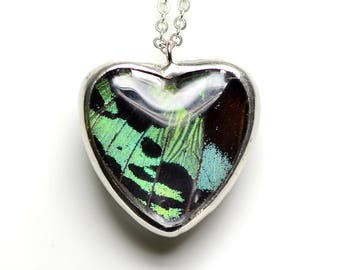 Real Butterfly Wing Necklace Madagascan Sunset Moth Heart Glass Jewel