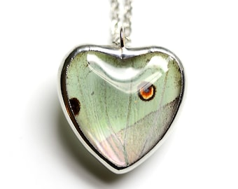 Real Butterfly Heart Necklace. Mother of Pearl Butterfly Pendant. Heart Pendant. Heart Necklace. Sweetheart Jewelry.