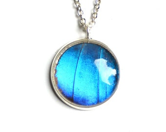 Real Blue Morpho Butterfly Wing Necklace Silver Plated Pendant