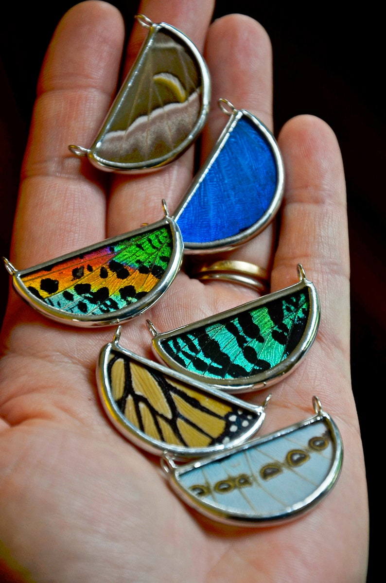 Nature Jewelry Terrarium Necklace Real Butterfly Necklace image 0