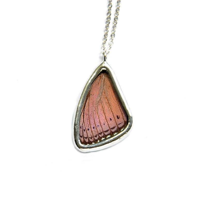 Real Butterfly Wing Necklace Purple Butterfly Wing Pendant image 0