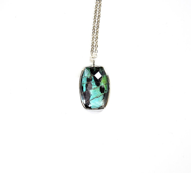 Butterfly Wing Necklace Real Sunset Moth Pendant Mother's image 0