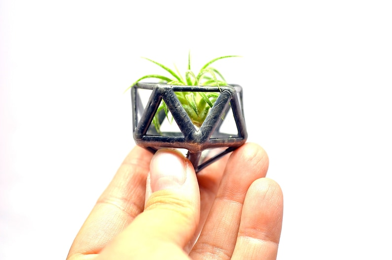 Air Plant Holder. Stained Glass Air Plant Planter. Gift for image 0