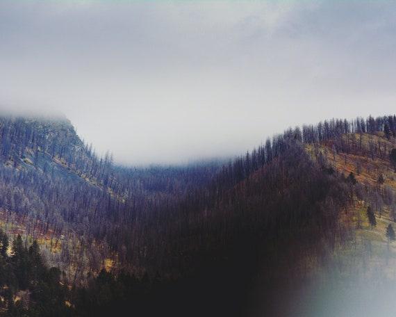 """""""Absaroka Fog"""""""